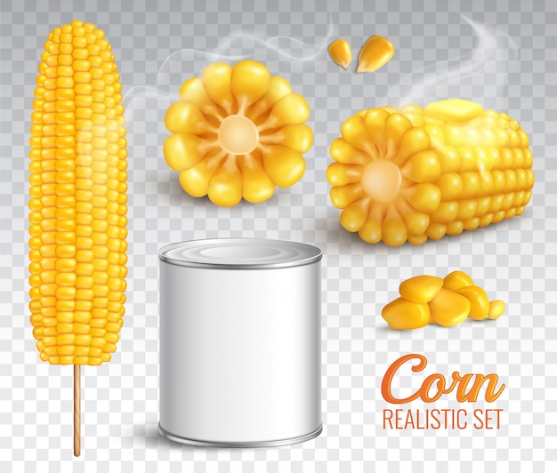 Realistic corn transparent set