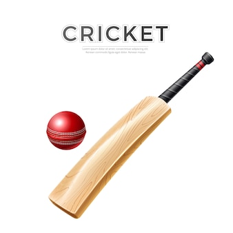 Realistic cricket bat with leather ball wooden stick for cricket design