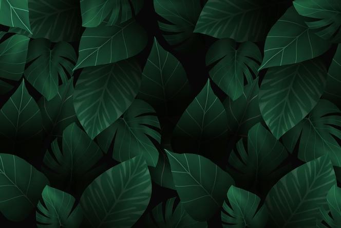 现实黑暗的热带叶子背景
