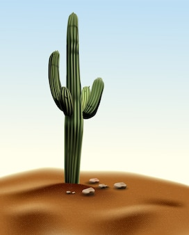 Realistic desert cactus carnegia giant. plant of desert among sand and rocks in habitat.