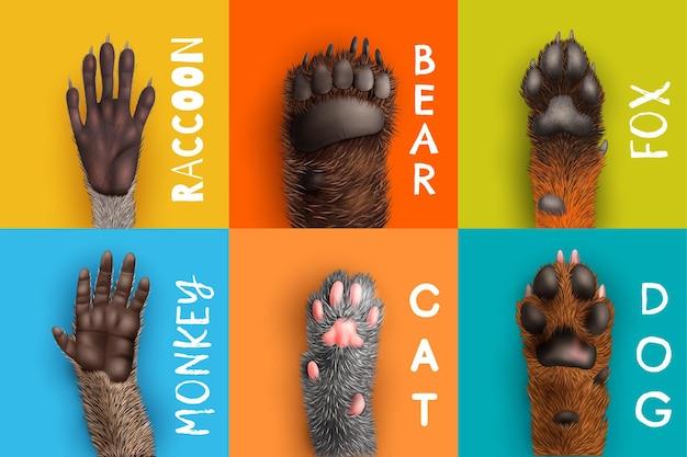레이블이 지정된 동물 발의 하단보기와 현실적인 디자인 컨셉