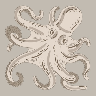 Реалистичный дизайн рисованной осьминога