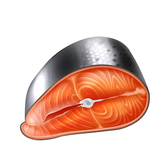 현실적인 상세한 3d 생 연어 슬라이스 벡터 현실적인 격리 된 그림입니다. 신선한 생선 해산물 필레, 송어 신선한 스테이크 또는 붉은 생선.