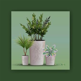 인테리어 디자인 및 장식을위한 현실적인 상세한 집이나 사무실 식물.