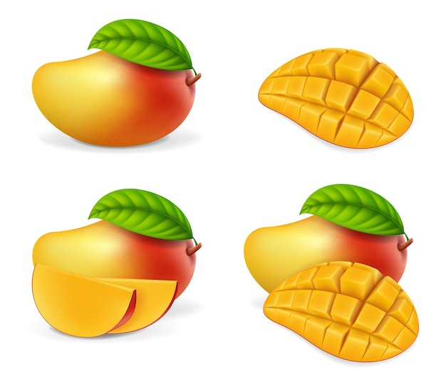 Realistic detailed whole and pieces mango