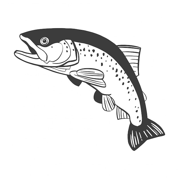 Realistic drawing of the trout jumping out water