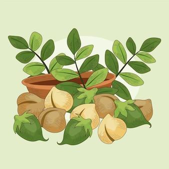 Реалистичные нарисованные бобы нута и растения