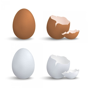 Realistic egg and cracked eggshell set
