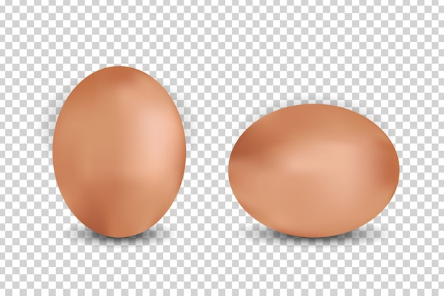 Realistic eggs on the transparent background. concept of happy easter.