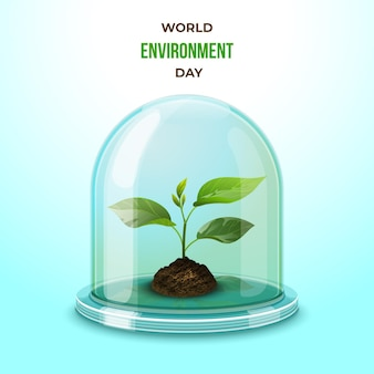 Realistic environmental day seedling in glass