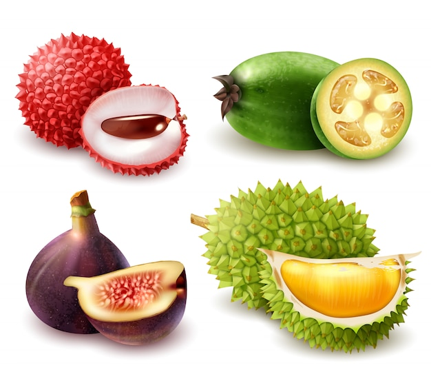 Realistic exotic fruits set