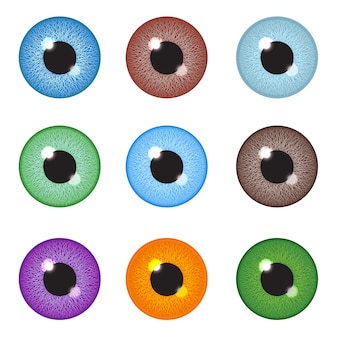 Realistic eyeball set