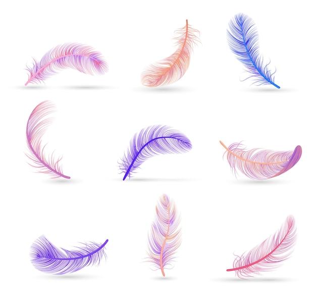 부드러운 보라색과 분홍색 고립 된 깃털 세트 현실적인 깃털