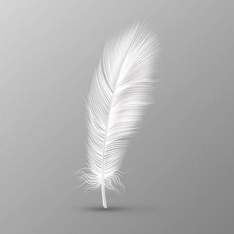 Realistic feather. single white soft bird wings smooth fluff on transparent background vector image