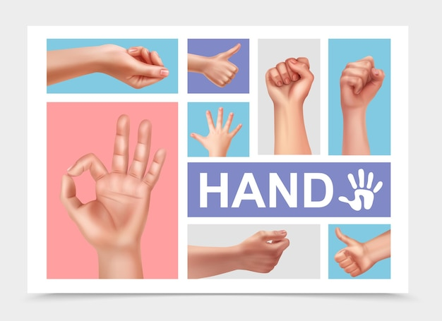Realistic female hands collection with ok thumb up signs woman fist and child hand isolated