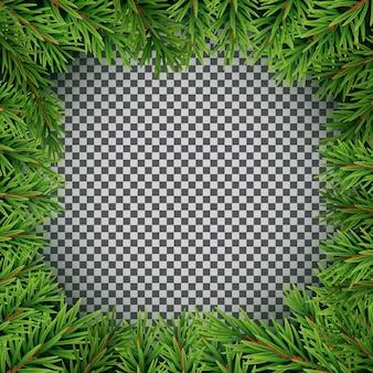 현실적인 전나무 가지. 기쁜 성 탄과 새 해 겨울 자연 배경입니다. 벡터 일러스트 레이 션 eps10
