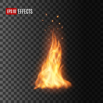 Realistic fire with sparks, isolated campfire
