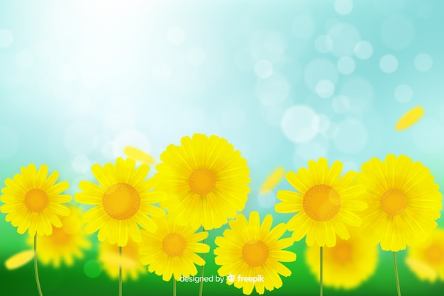 Realistic flowers background concept