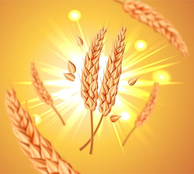 現実的な空飛ぶ小麦粒、オート麦、または大麦が黄色の太陽の背景に分離されました。天然成分。健康食品または農業、パン、ビールまたは作物のテーマ。 3 dイラスト。