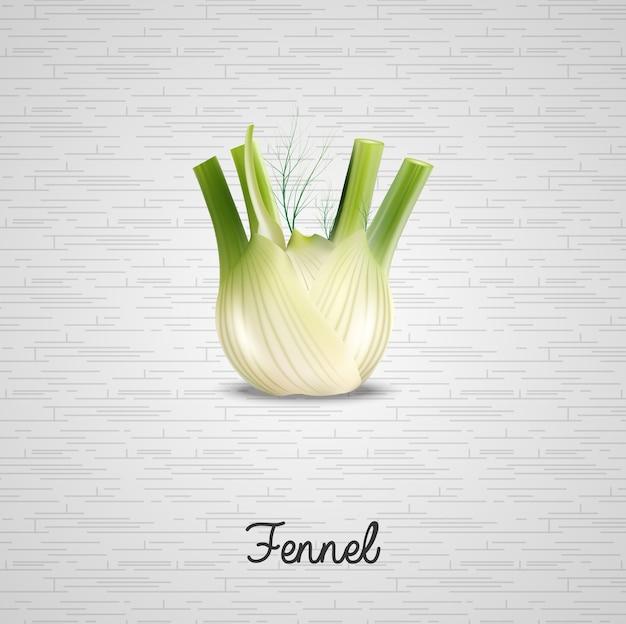 Realistic fresh fennel illustration