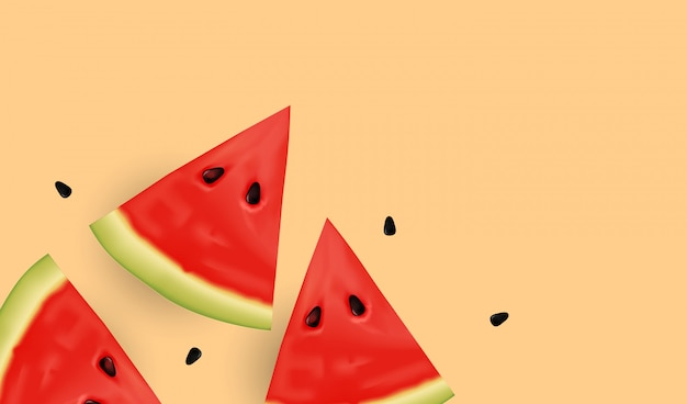 Realistic fresh water melon slices and seeds.