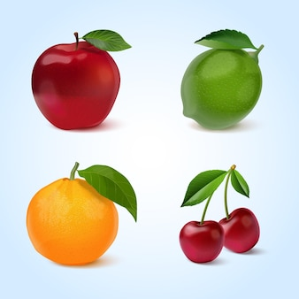 Realistic fruits collection