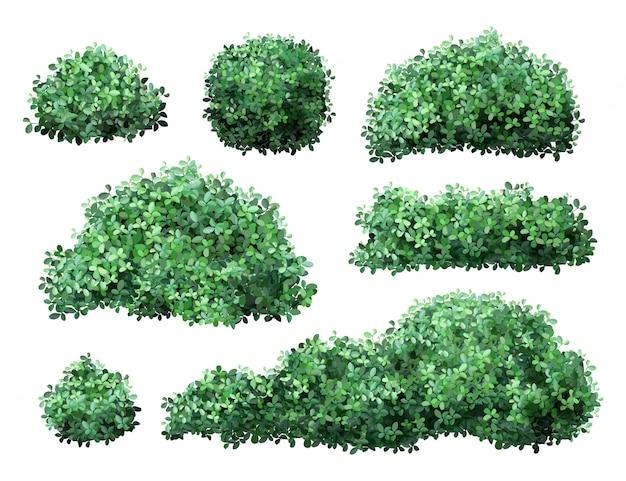 現実的な庭の低木。自然の緑の季節の茂み、ツゲの木、花の枝や葉、樹冠の茂みの葉。庭の緑のフェンスのイラストセット。公共の公園と庭園の要素