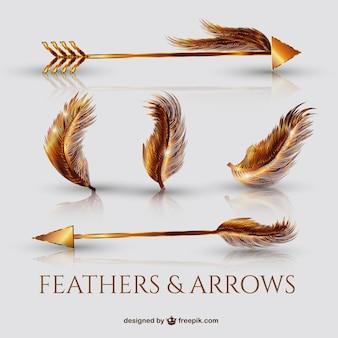 Frecce dorate realistici e piume