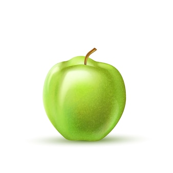현실적인 녹색 사과 과일 절연