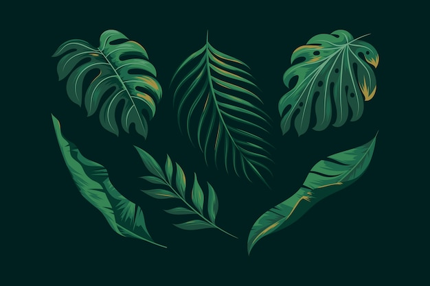 Realistic green exotic leaves collection