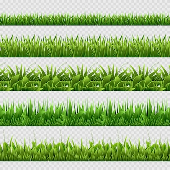 Realistic green grass seamless backgrounds isolated.