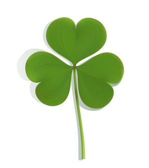 Realistic green leaf clover on white