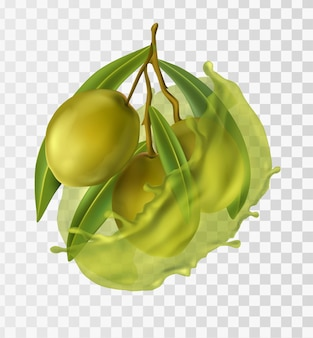 Realistic green olives with oils and leaves
