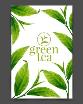 Реалистичные листья зеленого чая Premium векторы