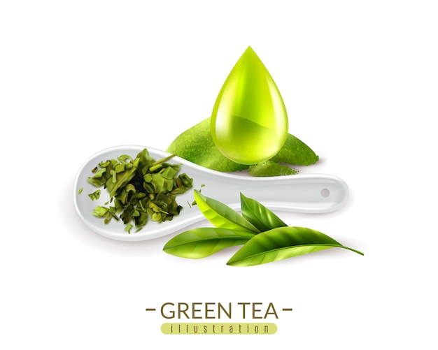 Realistic green tea and spoon and drop vector illustration
