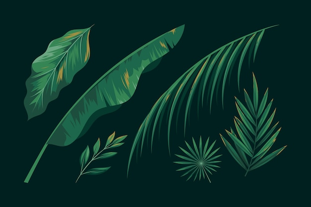 Realistic green tropical leaves collection