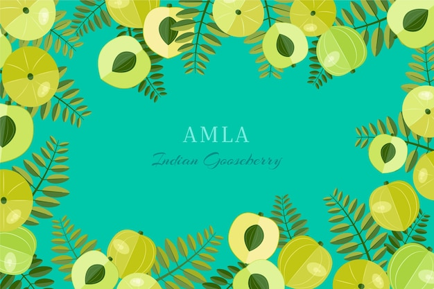 Realistic hand drawn amla fruit background