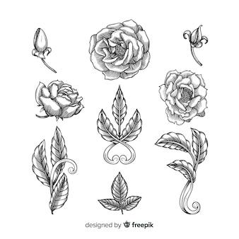 Realistic hand drawn baroque vintage flowers