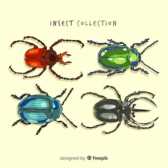 Realistic hand drawn beetle collection