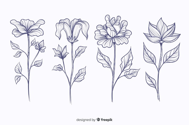 Realistic hand drawn botanical flowers collection