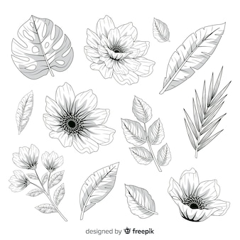 Realistic hand drawn flowers and leaves