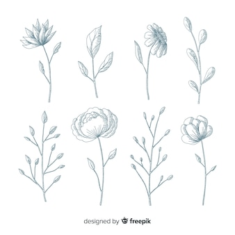 Realistic hand drawn flowers with stems and leaves in blue shades