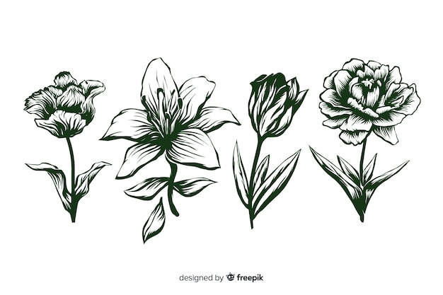 Realistic hand drawn flowers with stems and leaves in green colours