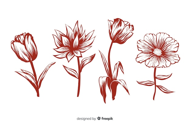 Realistic hand drawn flowers with stems and leaves in red colours