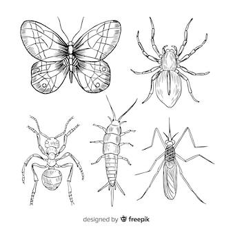 현실적인 손으로 그린 곤충 컬렉션