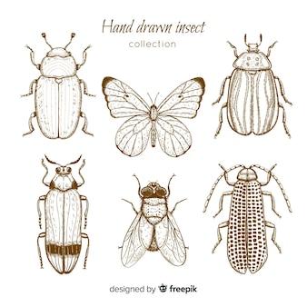 현실적인 손으로 그린 곤충 스케치 세트