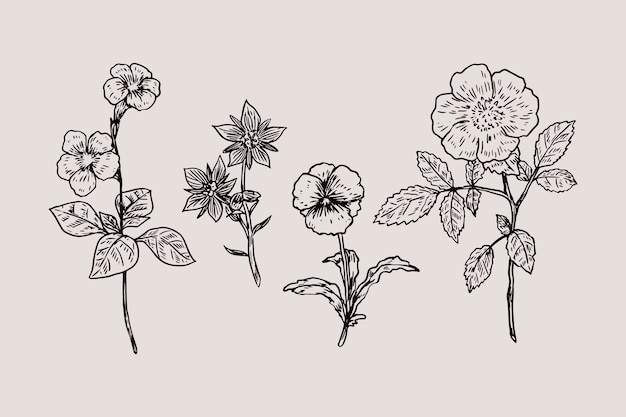 Realistic hand drawn vintage botany flower set
