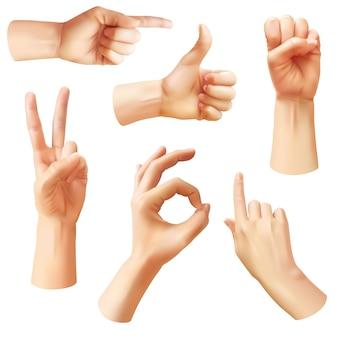 현실적인 손입니다. 다양한 제스처 인간의 손, 확인, 엄지손가락을 위로 가리키고 손가락, 핀치 및 주먹. 낙관적 인 팔 제스처, 통신 벡터 고립 된 기호