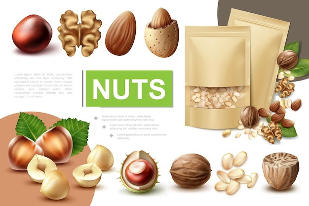 Realistic healthy nuts composition with walnut hazelnut macadamia nutmeg almond chestnut and packages of pine nuts