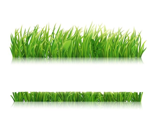 Realistic horizontal field lawn or meadow illustration